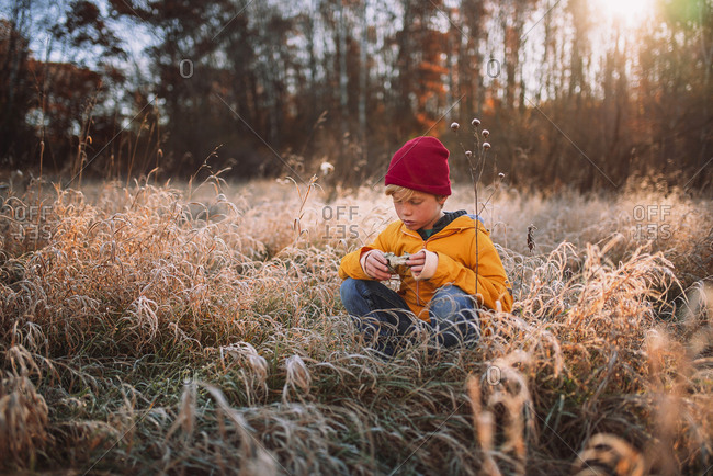 Young boy exploring the forest  in the late fall