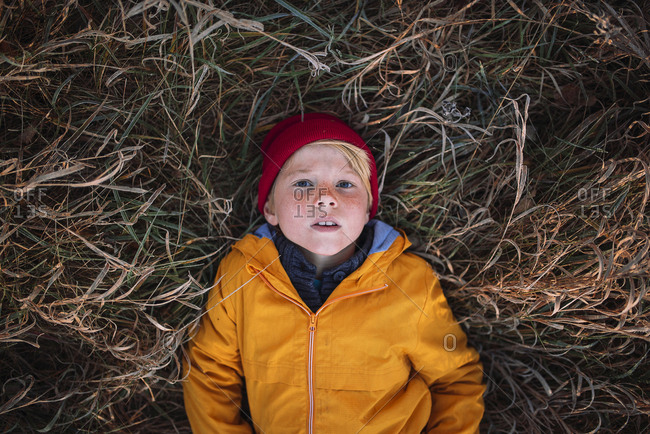 Overhead view of young boy laying in brown grass