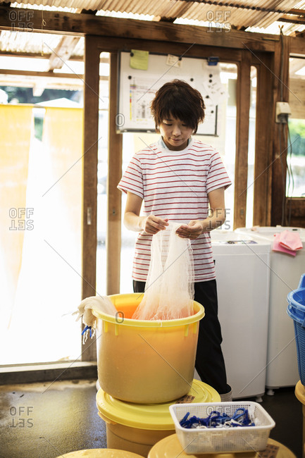 Japanese woman standing in a textile plant dye workshop, holding piece of sheer white fabric over yellow plastic bucket.