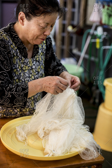 Japanese woman standing in a textile plant dye workshop, holding piece of sheer white fabric.