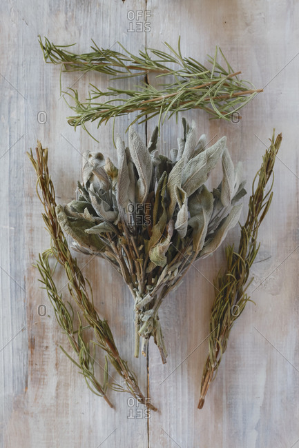 Fresh and dried rosemary and sage on wood