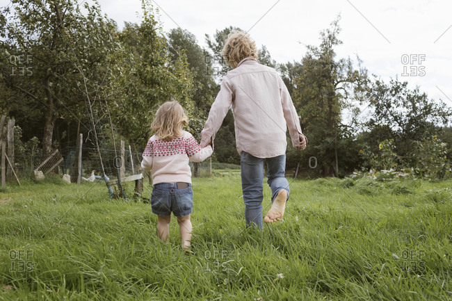 Back view of brother and his little sister walking barefoot on a meadow