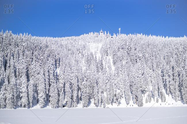 Germany- Baden-Wuerttemberg- winter landscape at Black forest near Mummelsee