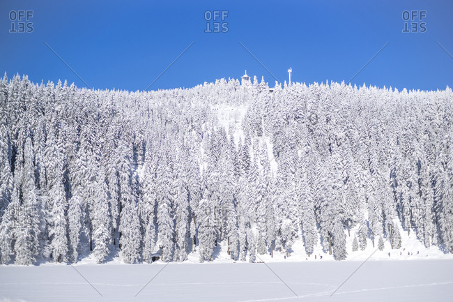 Germany- Baden-Wuerttemberg- winter landscape at Black forest near Mummelsee