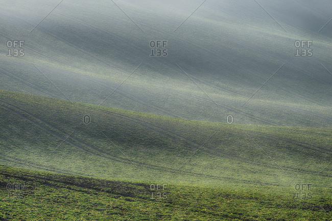 Rolling field landscape in early spring