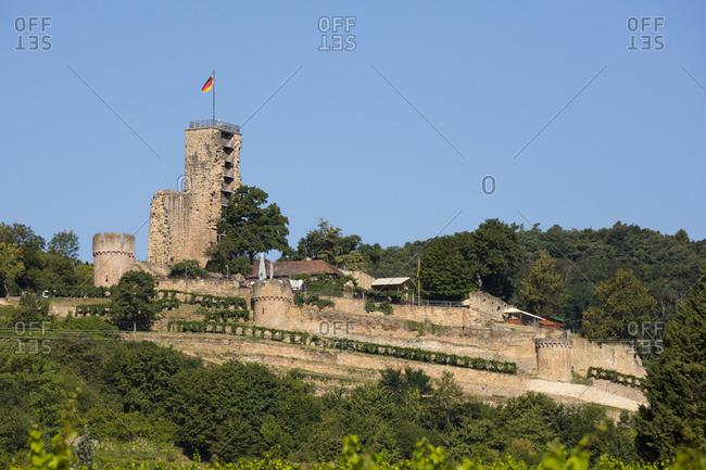 Germany- Rhineland-Palatinate- Wachenheim- Wachtenburg- ruin
