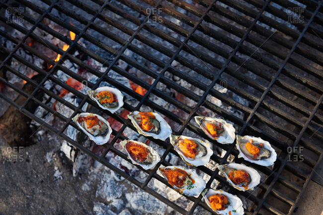 Oysters grilling over open coals, showing compound butter melting at an outdoor event.