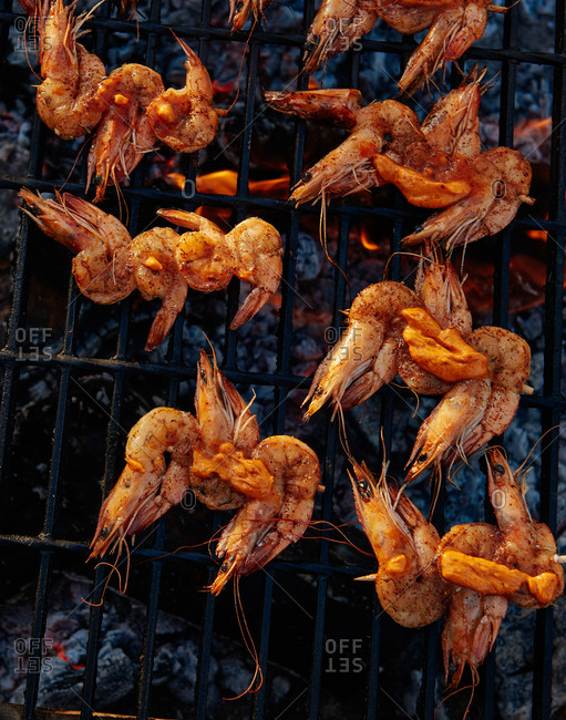 Shrimp with the shell on grilling on skewers outdoors over a charcoal pit with compound butter visibly melting from the heat.
