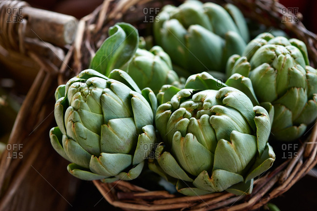 Globe artichokes presented for sale in a wicker basket at an outdoor farmer's market.