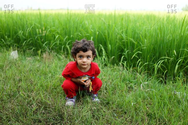 Little girl crouching in tall green grass