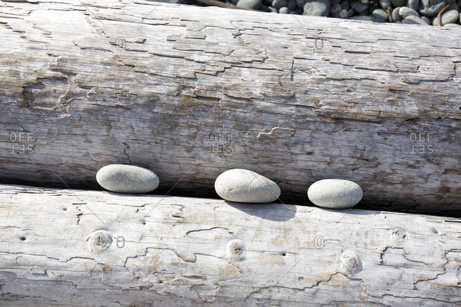 Three rocks stuck between washed up logs