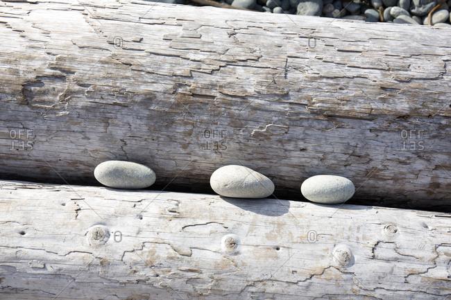 Three rocks stuck between washed up logs