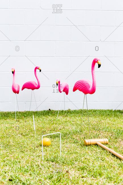 Backyard croquet equipment and pink flamingos