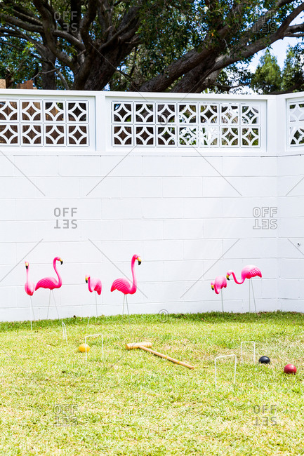 Croquet game set up in backyard with pink flamingos