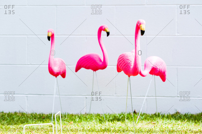 Pink flamingo yard decorations and croquet wickets