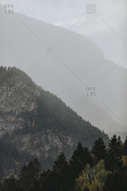 Haze over dense forest on mountainside