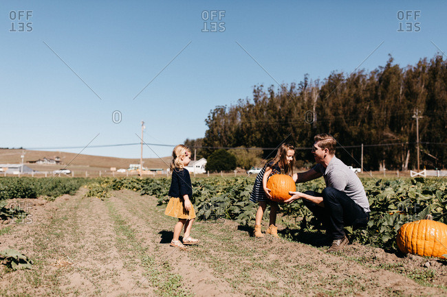 Father helping daughters pick out a pumpkin at the pumpkin patch
