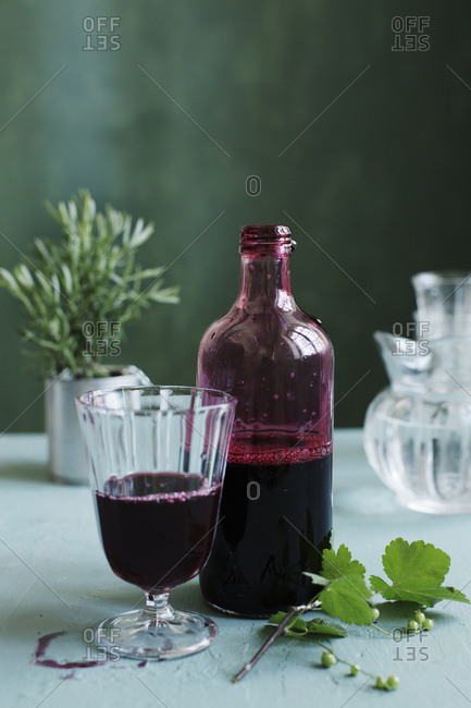 Black currant cordial with rosemary