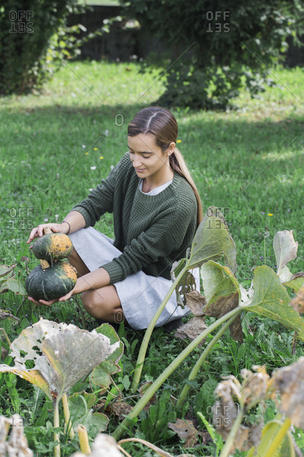 Young woman harvesting pumpkins in the garden