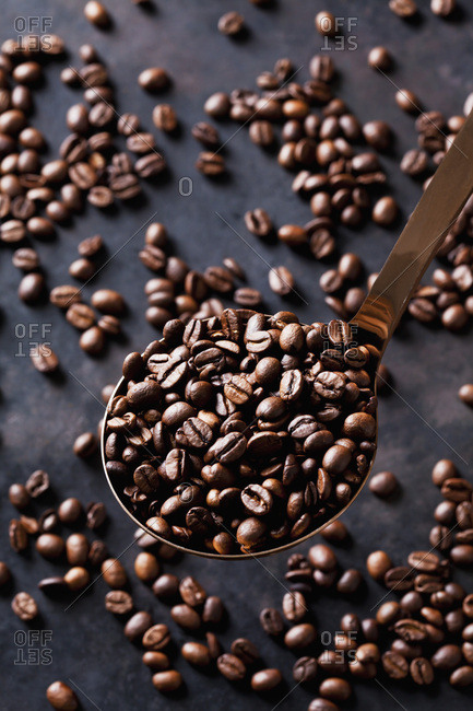 Freshly roasted coffee beans on a spoon