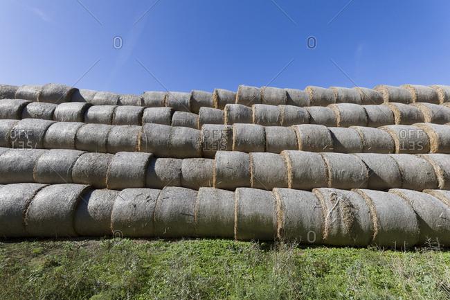 Germany- Mecklenburg-Western Pomerania- Rerik- straw bales