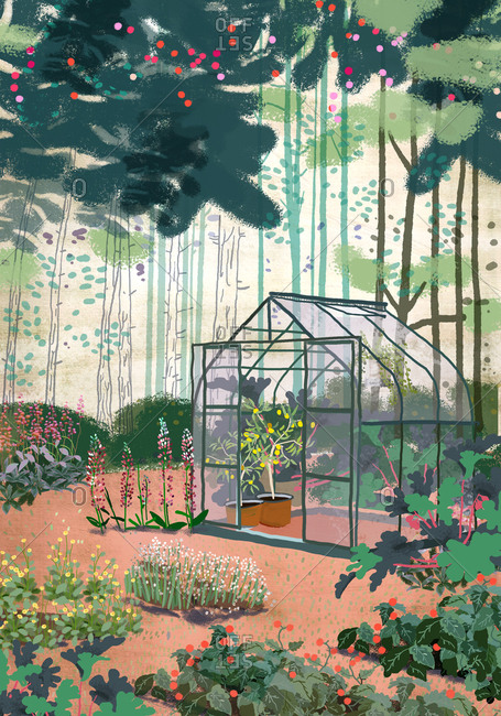 Greenhouse in wild garden at the forest