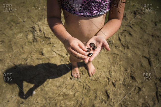 Girl holding seashells in her hand and standing along the sandy shore of a lake
