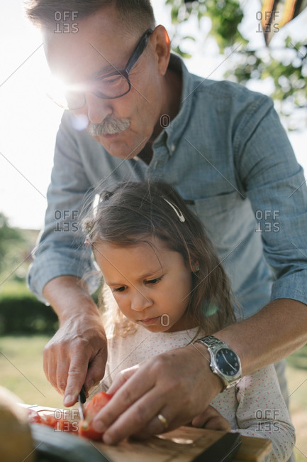 Grandfather teaching granddaughter to cut tomato at table in backyard