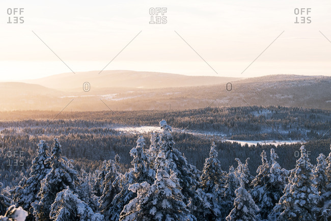 Winter evening on Brocken (mountain), Harz, Germany