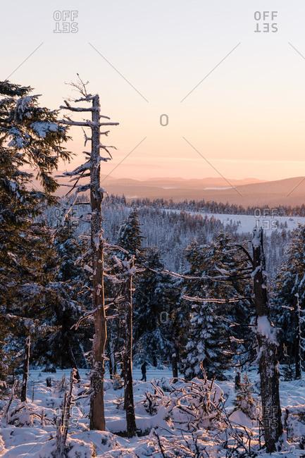 Winter evening on Brocken (mountain), Harz, Germany