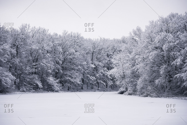 winter landscape with icebound pond, Germany, Wolfsburg