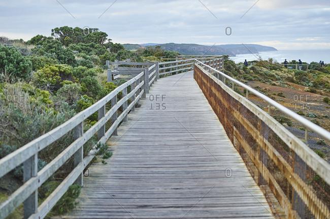 Path, Twelve Apostles, Great Ocean Road, Port Campbell National Park, Victoria, Australia, Oceania