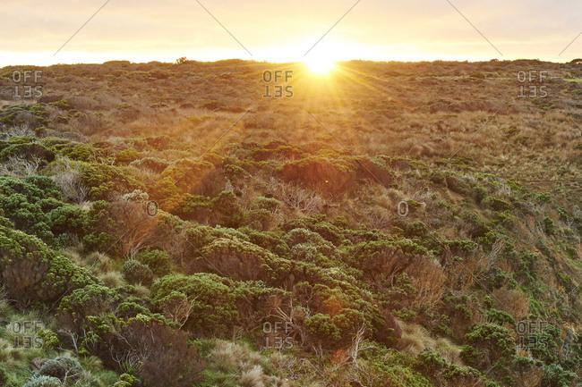 Sunrise at the Twelve Apostles, Great Ocean Road, Port Campbell National Park, Victoria, Australia, Oceania