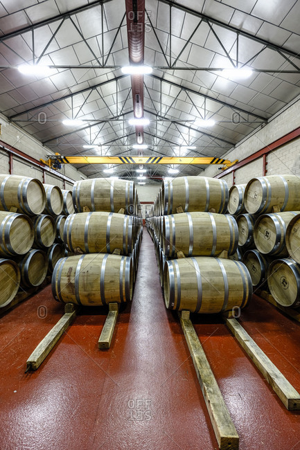Barrels in the cellars of the wine brand Alejandro Fernandez of denomination of origin Ribera del Duero in Valladolid Spain Europe