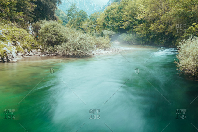 Haze above water among green trees
