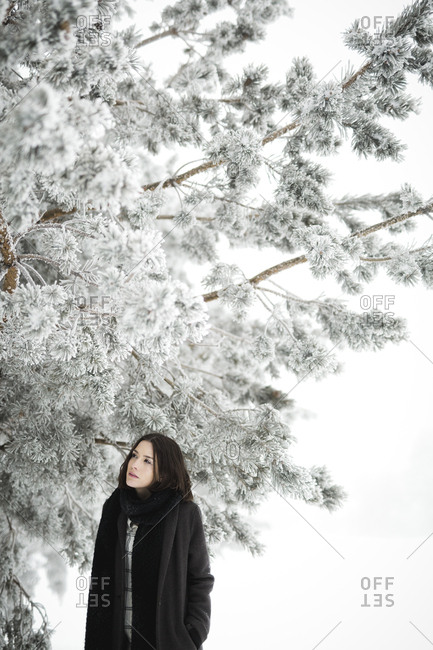 Pretty young female in stylish outfit looking away while standing near tree covered with snow on cold day in wonderful countryside