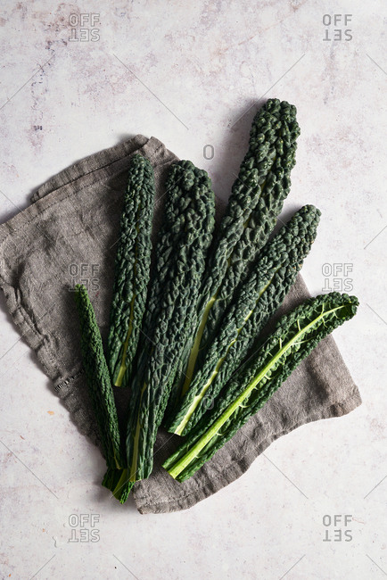 Cavolo nero leaves on cloth napkin