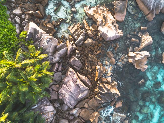 Rocks and trees on the coastline of Seychelles, Africa