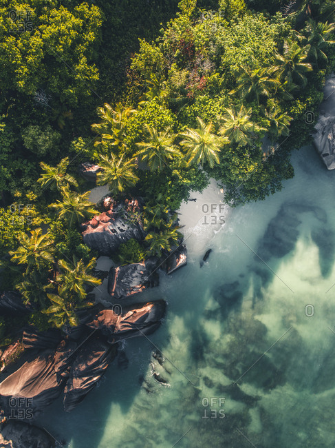 Bird's eye view of rocks and trees on the coastline of Seychelles, Africa