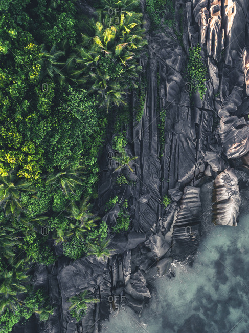 Rock formations and trees on the coast of Seychelles, Africa
