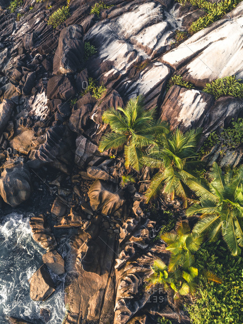 Rock formations and foliage on the coast of Seychelles, Africa