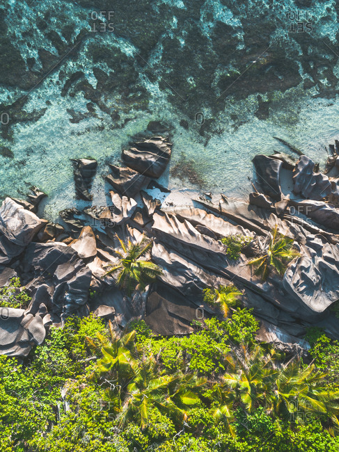 Green foliage and rocks on the coast of Seychelles, Africa