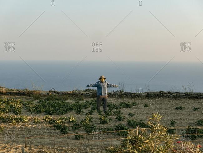 Scarecrow in a field, Folegrandos, Cyclades, Greece