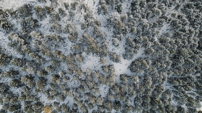 Bird's eye view of snow covered landscape in Spain