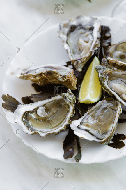 Raw oysters served in a french restaurant with lemon slices, wine, baguette and butter
