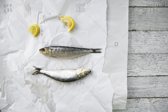 Two sardines on parchment paper