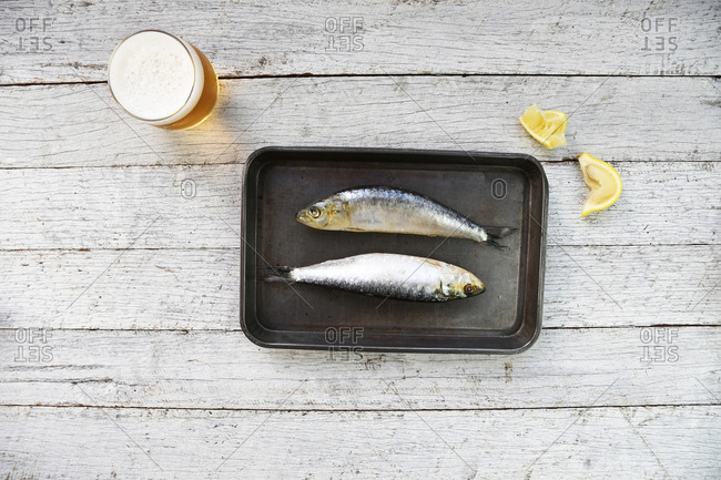 Two sardines on a small pan beside beer