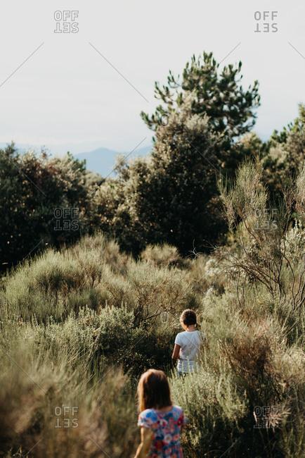 Children hiking through sagebrush in wilderness area