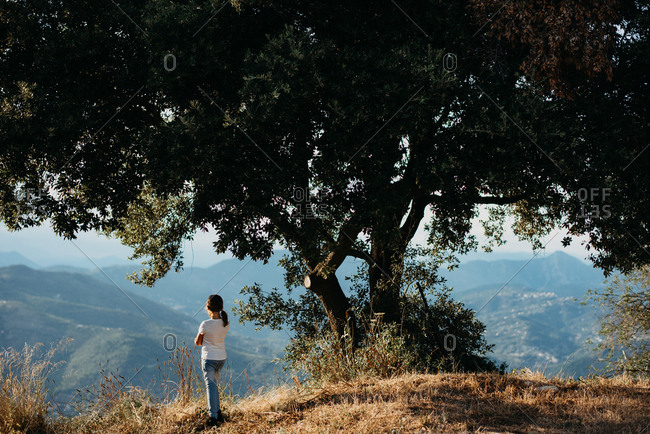 Girl standing under a large tree while looking out over mountain scenery at a scenic viewpoint