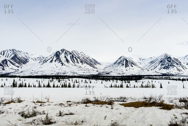 Beautiful winter scenery with view of snowcapped mountains in Denali National Park, Alaska, USA